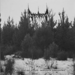STRIBORG Black Desolate Winter / Depressive Hibernation 2LP