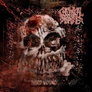 CHEMICAL DISASTER Third Wound CD