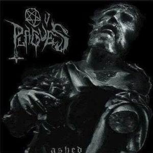 OV PLAGUES Ashed CD