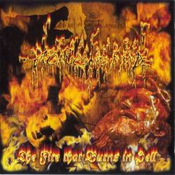 A GRUESOME FIND The Fire That Burns In Hell CD